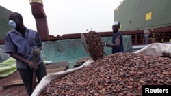 Workers gather bags of cocoa at the port of Abidjan. EU-registered vessels have been barred from all new financial dealings with Ivory Coast's two main cocoa-exporting ports, 17 Jan 2011.