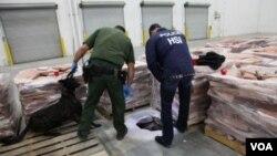 Pihak berwajib AS mengamati pintu masuk terowongan narkoba di Otay Mesa, California selatan (15/11).