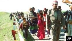 پهنابهرانی کورد 1991