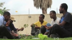 Chewing Khat Increasingly Popular Among Ethiopians
