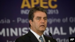 FILE - WTO Director-General Roberto Azevedo on sidelines of the Asia-Pacific Economic Cooperation (APEC) Ministerial Meeting, Bali, Oct. 5, 2013.