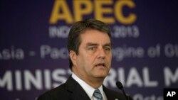 世貿組織總幹事阿澤維多承諾在2014年讓多哈談判重回軌道。(資料圖片)