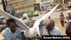 Les jeunes ont remis une colombe au maire de ville de Bukavu pour traduire leur désir de la paix durable dans les pays des grands lacs, le 10 décembre 2016. (VOA/Ernest Muhero)