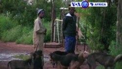 Manchetes Africanas 10 Maio: Ruanda, Quénia e África do Sul em destaque