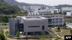 Lembaga Virologi di Wuhan, provinsi Hubei, China.
