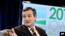 Ted Cruz (AP Photo/Charlie Neibergall)