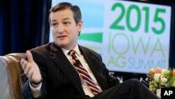 Senator negara bagian Texas, Ted Cruz (foto: dok).