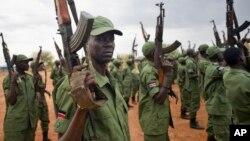 Mayakan 'yan tawayen Sudan ta Kudu