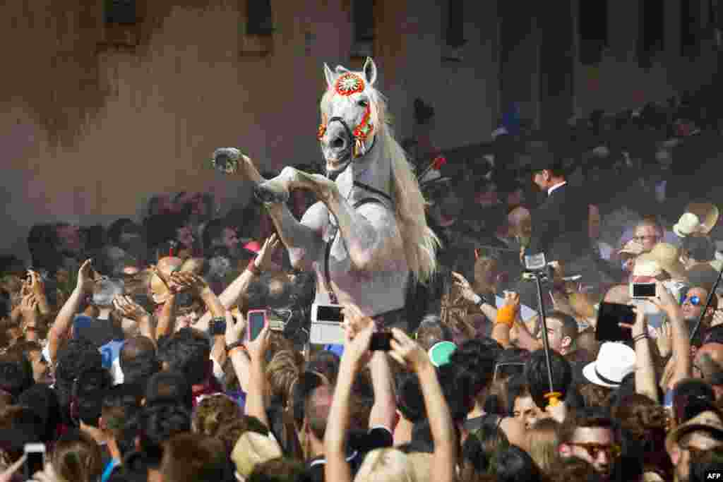 A horse rears in a crowd during the traditional San Juan (Saint John) festival in the town of Ciutadella, on the Balearic Island of Menorca on the eve of Saint John's day, June 23, 2015.