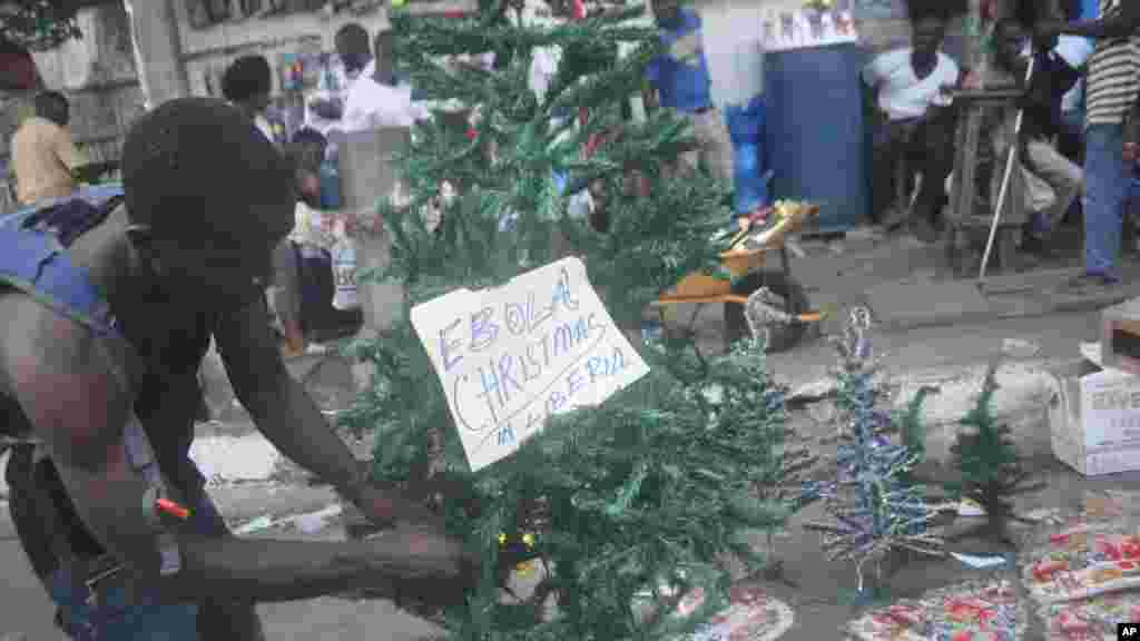 A Liberian man arranges a Christmas tree at a shop in Monrovia, Liberia,