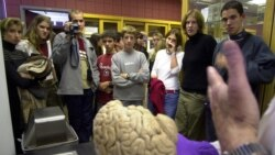 Brainwash: Not as Clean as You Think