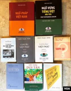 Một số tác phẩm của Gs Trần Ngọc Ninh. [tư liệu Ngô Thế Vinh]