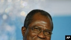 Nigerian Foreign Minister Ojo Maduekwe (file photo)