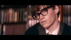 Cine: La teoría del todo