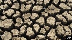 چین کے آٹھ صوبوں میں شدید خشک سالی