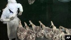 中國浙江省金華的一名工人正製作火腿