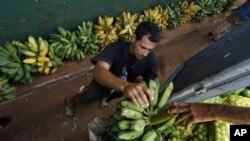 Cuba importa la mayor parte de los alimentos que consume por valor de más de $1.500 millones de dólares al año.