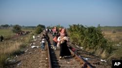Migrantes sirios caminan a lo largo de una vía férrea tras cruzar la frontera serbia-húngara cerca de la población de Roszke, en el sur de Hungría, el domingo 13 de septiembre de 2015.