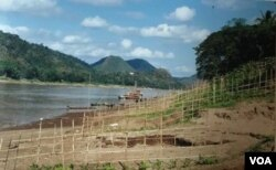 Khu vực dự kiến xây đập Luang Prabang 1410 MW trên dòng chính sông Mekong, chỉ cách thị trấn Luang Prabang 25 km.; hình chụp khúc sông Mekong chảy qua địa phận cố đô Luang Prabang, đã được UNESCO công nhận là Khu Di sản Thế giới / World Heritage Site từ năm 1995, vốn được ca ngợi như một trong những thành phố cổ đẹp nhất Đông Nam Á thì nay Luang Prabang đang bị thương mại hóa và cả Hán hóa. [Nguồn: photo 2000 by Ngô Thế Vinh]