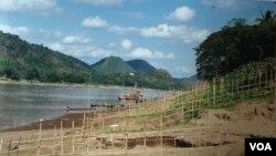 Khu vực dự kiến xây đập Luang Prabang 1410 MW trên dòng chính sông Mekong, chỉ cách thị trấn Luang Prabang 25 km.
