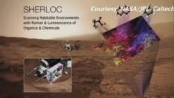 吸食岩矿微生物改变对生命的科学认识