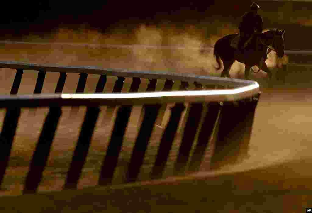 Лошадиные скачкиBelmont Stakes в Северной Каролине. Автор:Julie Jacobson