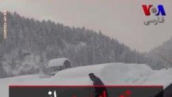 تصاویری از برف سنگین در جنوب آلمان