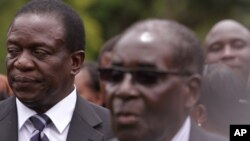 Is Zanu PF Planning to Dump Mnangagwa?