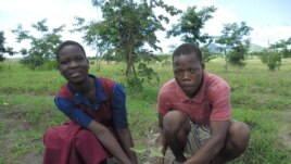 In Malawi, students plant trees in the woodlot of Kanje primary school (Photo: Mary's Meals)