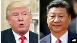 FILE - A combination photo shows U.S. President-elect Donald Trump, center, Nov. 10, 2016, and China's President Xi Jinping, Nov. 22, 2016.