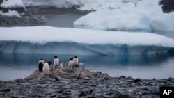 En la península antártica, donde el continente se está calentando más rápidamente porque la Tierra se adentra a un océano cada vez más cálido, se pierden casi 45.000 millones de toneladas métricas de hielo cada año, según la NASA.