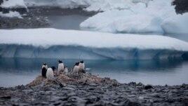 Turizmi në Antarktidë