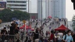 Hong Kong Democratic Party Founder Criticizes Beijing