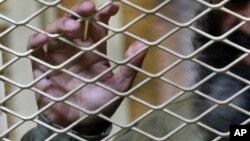 Kết luận của ủy ban Tổng thống Afghanistan đánh dấu lần đầu tiên Afghanistan thừa nhận tệ nạn tra tấn tại các trại giam.