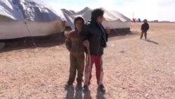 Mosul qaçqınları