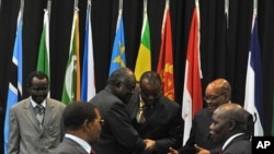 Leaders gather at the opening of the Southern Africa Development Community summit in Johannesburg, June 12, 2011