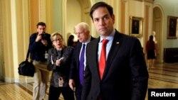 미국 공화당 소속 마르코 루비오 상원의원이 지난달 16일 공화당 상원지도부 선출에 참여하기 위해 의회 회의장에 들어서고 있다.
