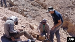 FILE - This handout picture released by the Universidad de Chile shows a group of scientists working in the field to retrieve pterosaur fossils in the Atacama Desert in northern Chile, on Aug. 11, 2013.