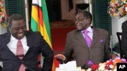 ZIMBABWE CONSTITUTION
