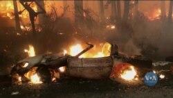 На Заході США вогнеборці досі не можуть взяти під контроль десятки займань. Відео