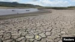 Resultado do El Nino