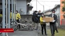 Ăn cắp trái cây, ba cựu thực tập sinh người Việt bị bắt ở Nhật