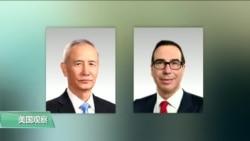 """专家视点(陈朝晖):世界经济放缓,中国面临""""黑天鹅""""?"""