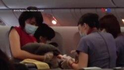 Người mẹ sinh con trên máy bay tới Mỹ bị 'từ chối nhập cảnh'