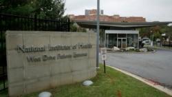 跨黨派眾議員要求NIH提供刪除新冠基因序列數據的訊息