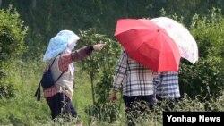 지난달 30일 경북 경주 첨성대 인근을 지나는 시민들이 자외선차단 모자와 양산으로 뜨거운 태양을 피하고 있다.