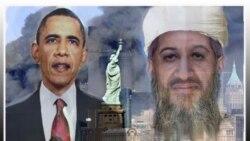 شماری از نمایندگان کنگره آمریکا می گویند خطر القاعده هنوز از میان نرفته است