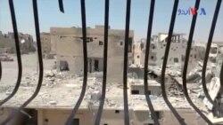 داعش کو رقہ میں مسلسل شکست کا سامنا