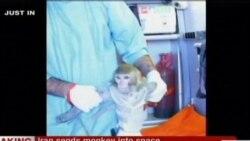 Иран лансирал мајмун во вселената