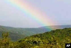 A view over part of the ecologically diverse 'Albany Hotspot' in South Africa's Eastern Cape province